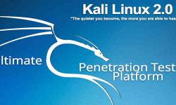 Hail Mary! Kali Linux 2.0 Arriving on August 11